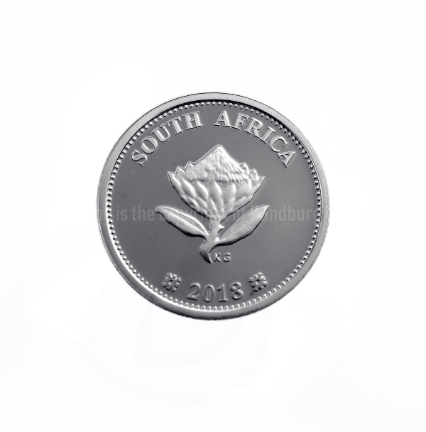 Silver Proof Combo Set R2 and 2 1/2c South African Inventions