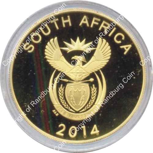 2014_Protea_Gold_1oz_20Yr_Democracy_Coin_ob.jpg